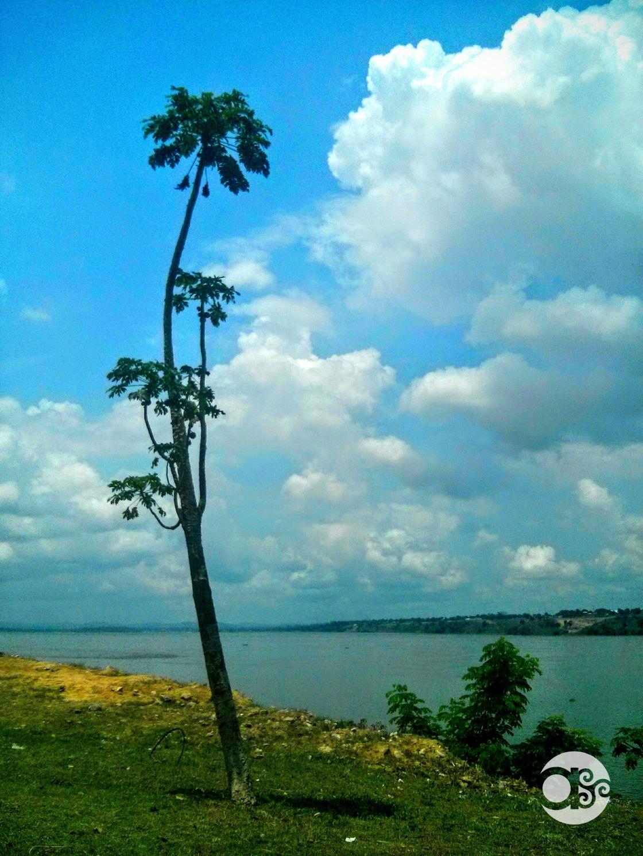 Río Congo_1_Xudit Casas